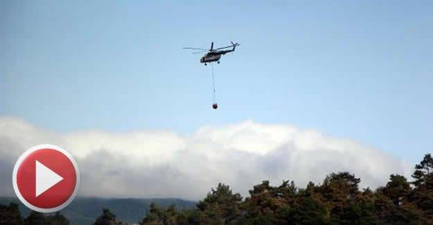 2 gün süren orman yangınında 100 hektar kül oldu
