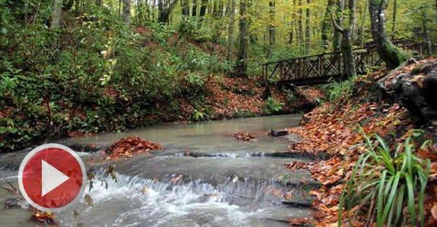 Kent Ormanı'nda sonbahar güzelliği