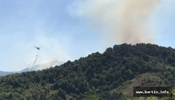 Bartın'da 10 Hektar Orman Küle Döndü