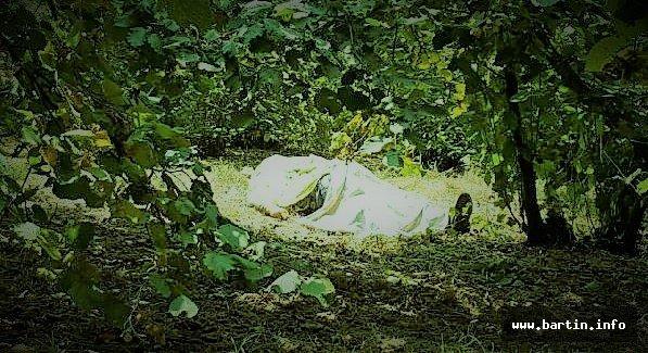 Ağaçtan Düşen Yaşlı Adam Öldü