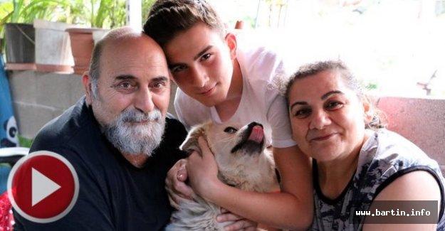 Köpekleriye Buluşma Anı Milyonlarca Kez İzlendi