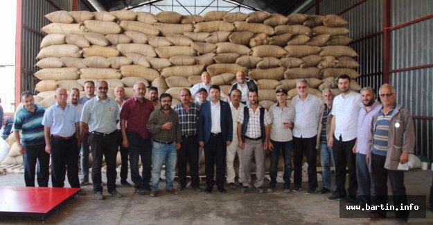 Fındık üreticisine 53 milyon TL Destek