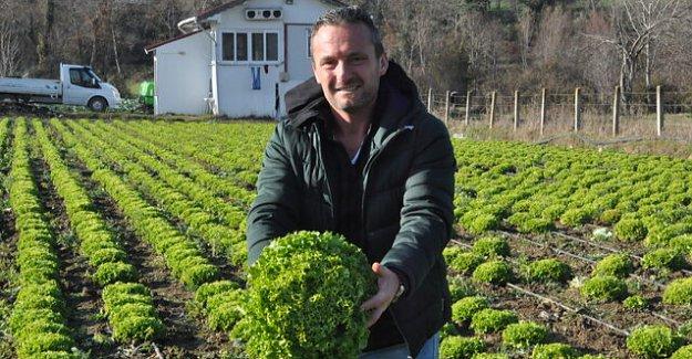 Bartınlı Çiftçinin Başarı Hikayesi
