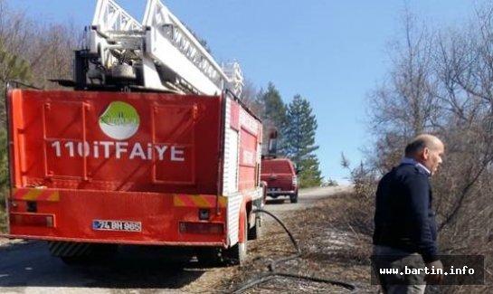 Ormandaki yangın fındık bahçesine sıçradı