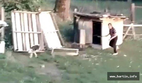 Komşusunun Köpeğini Sopayla Dövdü