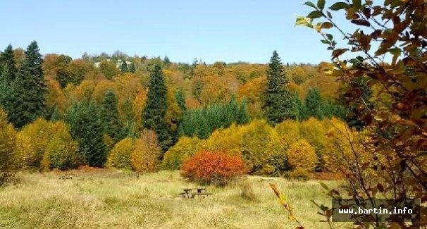 Milli Park'ta Sonbahar Güzelliği