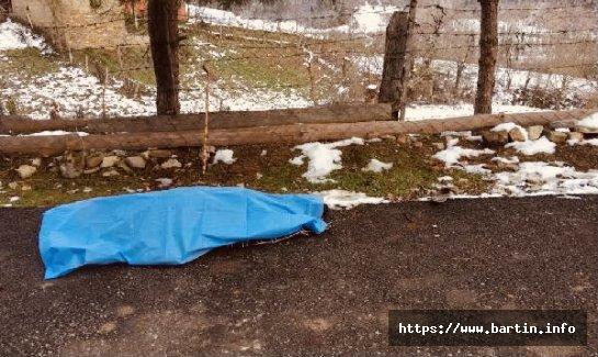 Kamyonetin Çarptığı Yaşlı Kadın Öldü