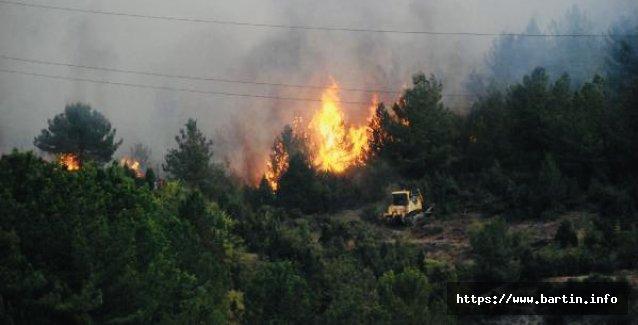 45 Hektar Orman Kül Oldu