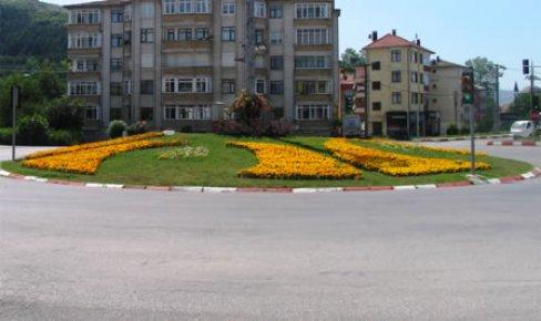 38 bin 500 adet çiçek dikildi