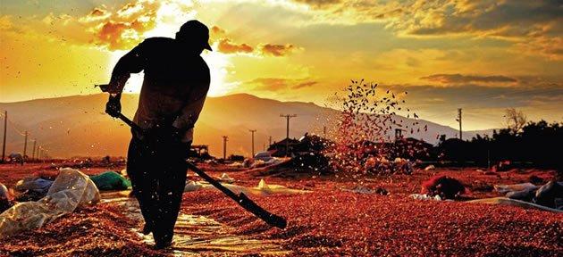 5.Tarım ve İnsan Fotoğraf Sergisi açılıyor