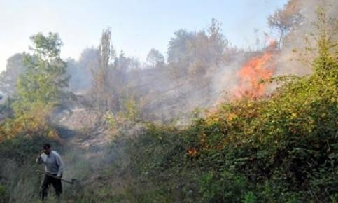 Amasra, Kurucaşile ve Karabük'te Orman Yangını