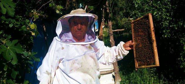Bartınlı Arı Üreticisinden İlginç Yöntem