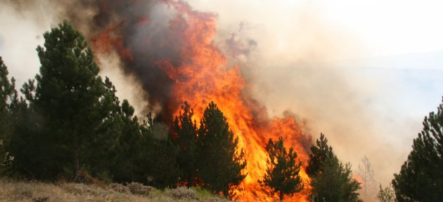 Bartın Polisi Orman Yangınlarına Dikkat Çekti
