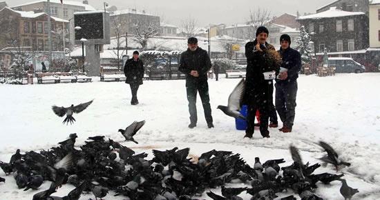Başkan'dan aç kalan kuşlara yem