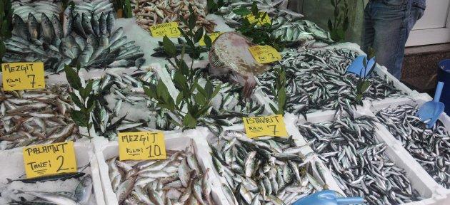 Batı Karadeniz'de Balık Fiyatları Düşüyor