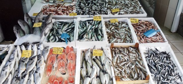 Batı Karadeniz'de Balık Fiyatları El Yakıyor