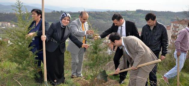 Bu Dünyada Bir Dikili Ağaçları Var