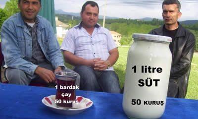 Çiftçinin hali perişan: Çay 50 kuruş, 1 litre süt 50 kuruş