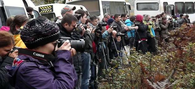 Doğa Fotoğrafçıları Bartın'a Akın Etti