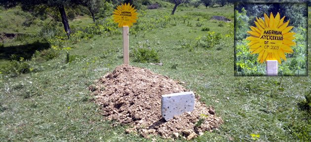Görenleri hayrete düşüren mezar