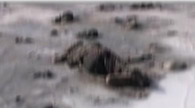 Kayıp kadının donmuş cesedi bulundu