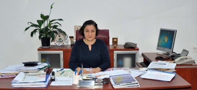 Kdz. Ereğli Belediyesi'nin Bankalarda 7.7 Milyon Tl Parası Var