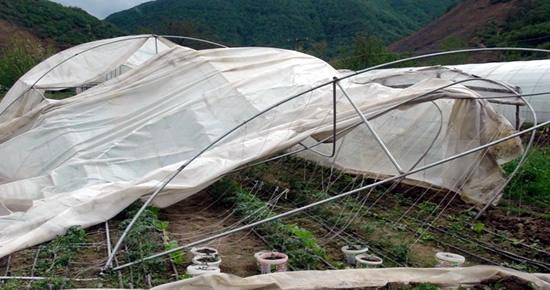 Seralar fırtınadan büyük zarar gördü