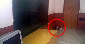 Bartın#039;da Sınıflarda Çöp...