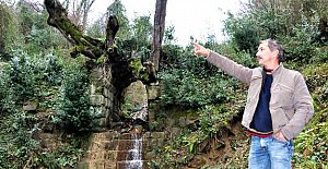 Tarihi Köprü Yok Olma Tehlikesiyle Karşı Karşıya