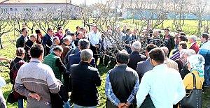55 Çiftçiye Budama ve Aşılama Eğitimi