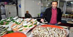 Olta mezgiti 20 liradan satılıyor