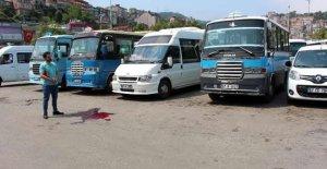 Dolmuş şoförleri arasında kavga: 3 yaralı