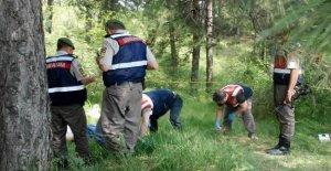 MHP'li Eski Siyasetçi Ormanda Ölü Bulundu