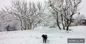 Batı Karadeniz#039;de kuvvetli kar...