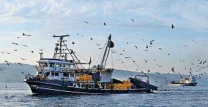 Kıyı Balıkçılığı Destekleme listesi askıda