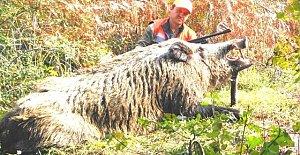 400 kiloluk domuzu vurup, poz verdi
