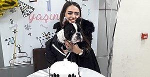 Köpeği için doğum günü partisi...