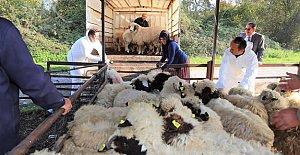 472 Genç Çiftçiye 14 Milyon Lira Destek