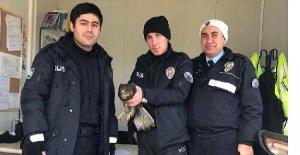 Avcılar vurdu, polis sahip çıktı