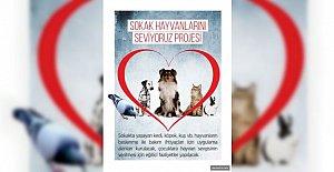 Akın: Sokak Hayvanlarını Seviyoruz