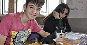 Öğrenciler, Miya ve Yavrusu Miyav'a Sahip Çıktı