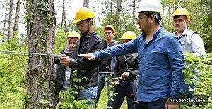 Ormancılık Bölümünden Bir İLK