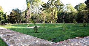 Sera Alanı Elmalık Park'a Dönüşüyor