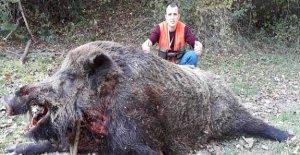 400 Kiloluk Domuz Vurdu