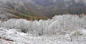 Kar Yüksek Kesimlerde Etkili Oluyor