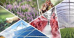 Bartın'da 8 projeye %50 hibe desteği 1.5 Milyon TL
