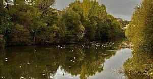 Bartın Irmağı'ndan Utandıran Görüntüler