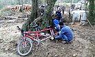 Bisikletlerini Ağaçlara Zincirlediler