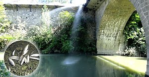 Bartın Irmağı'nda balık ölümlerine karşı su takviyesi