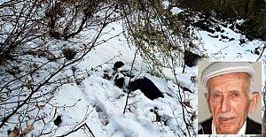 Alzheimer hastasının ormanda cesedi bulundu